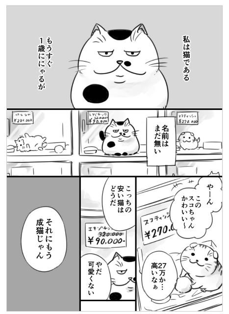 f:id:mako-s-kurowassan0411:20190107215027j:plain