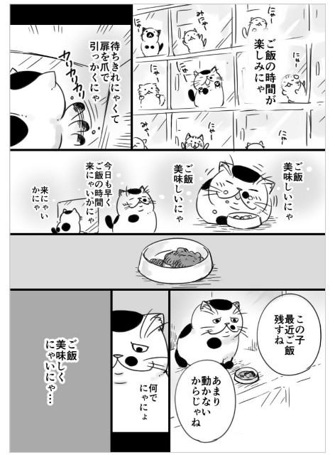 f:id:mako-s-kurowassan0411:20190107231054j:plain