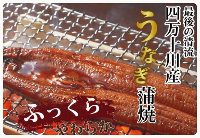 f:id:mako-s-kurowassan0411:20190115013649j:plain