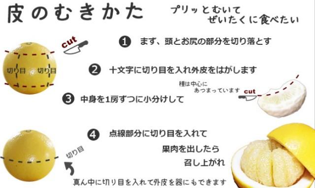 f:id:mako-s-kurowassan0411:20190311202536j:plain