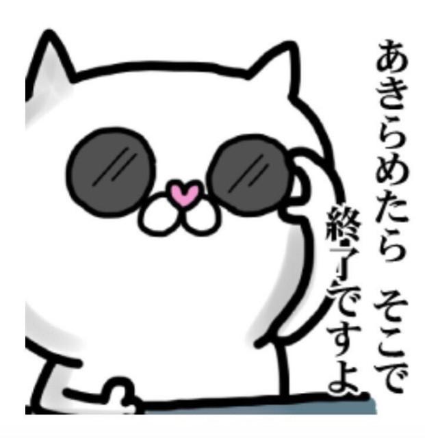 f:id:mako-s-kurowassan0411:20190403171822j:plain