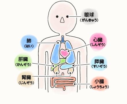 f:id:mako-s-kurowassan0411:20190414211656j:plain