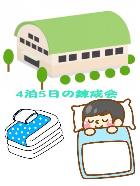 f:id:mako-s-kurowassan0411:20190505012417j:plain
