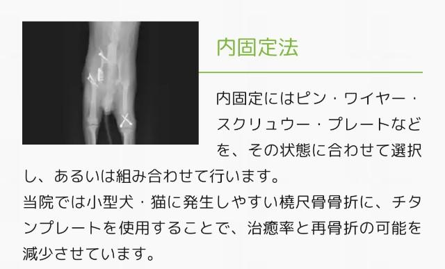 f:id:mako-s-kurowassan0411:20190622093001j:plain