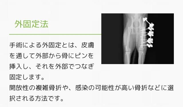 f:id:mako-s-kurowassan0411:20190622093015j:plain