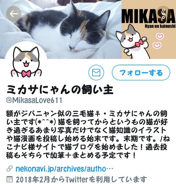 f:id:mako-s-kurowassan0411:20190706104705j:plain