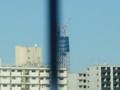 清洲橋から見た東京スカイツリー(拡大その2)