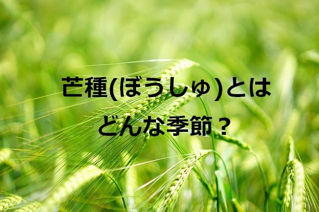 f:id:makosan1988:20190605220852j:plain