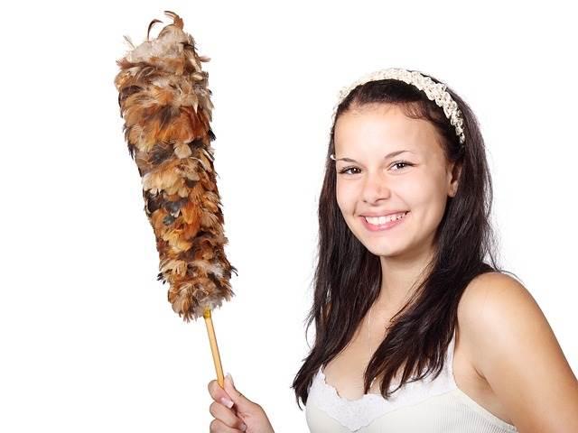ほこりたたきを持つ女性の写真