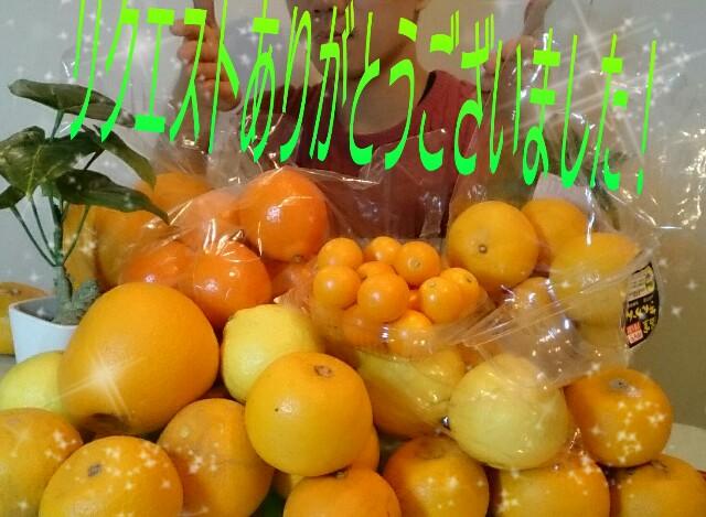 f:id:makoto-endo:20160401002117j:image