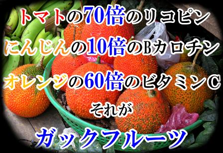 f:id:makoto-endo:20180122110714p:plain