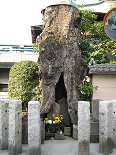 f:id:makoto-jin-rei:20070302152514j:image