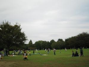 青葉の森公園 わんぱく広場