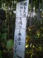 竹林の「廻る大仏こちらです」
