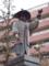 徳川家康像 近景