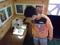 タヌキモの標本を顕微鏡で見る