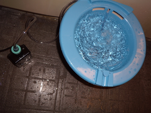 お風呂で座浴器スイッチオン