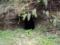 本堂裏の洞穴