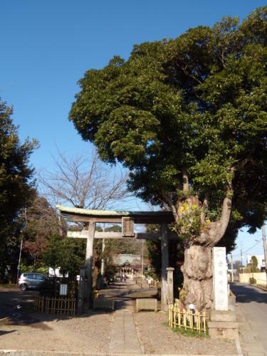 子安神社・鳥居