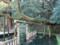 鹿島神宮 御手洗 にかかる 大樹