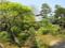 長勝寺 本堂裏の庭