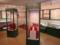 印旛郡市文化財センター 考古資料展示室 内
