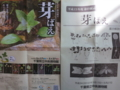 平成23年度春の展示「芽ばえ」のチラシと展示解説書