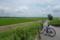 柏の田園1