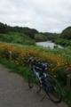 花島公園から花見川をのぞむ