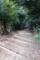 清蓮院の階段