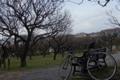 エス八と梅林園