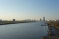 鹿浜橋から川口を望む