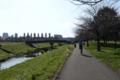 大堀川沿の遊歩道