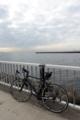 花見川河口1