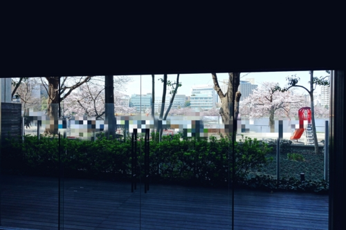 窓から見える不忍池
