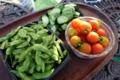 差し入れの枝豆・トマト・糠漬け