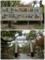 大楠公御一代記と参道中央の鳥居