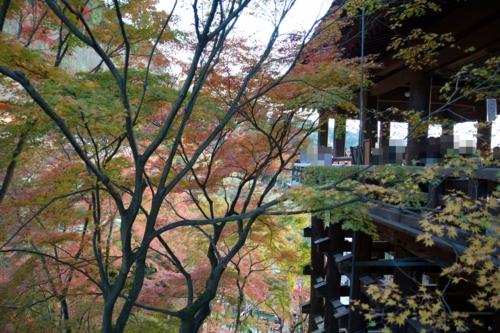 国宝・清水の舞台と紅葉
