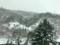 新幹線の車窓から見た雪景色