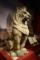 テラコッタ製のライオン
