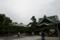 帝釈堂と瑞龍の松