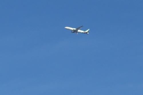 成田を飛び立つ飛行機絵