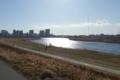 光る多摩川