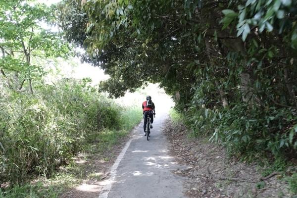 鬱蒼としたサイクリングロード