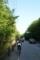 青木ヶ原樹海の間を走る