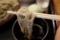 牡丹蕎麦を鯖出汁で手繰る