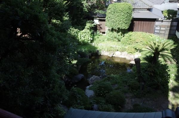 弁天堂の上から見た弁天池
