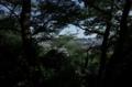金藏寺裏山からの景色
