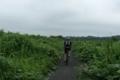 佐倉市内のサイクリングロード