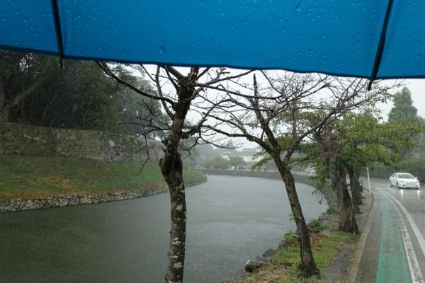 土砂降りの内堀